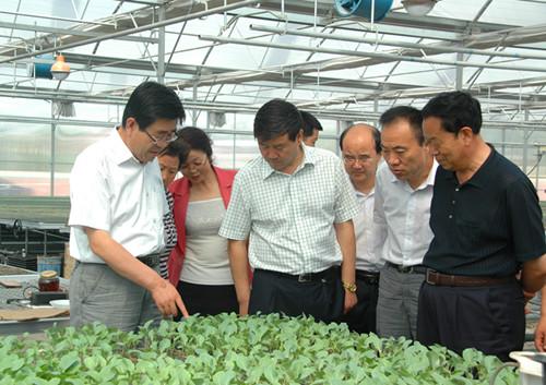 兰州市政协副主席陈卫东在皋兰调研并走访委员