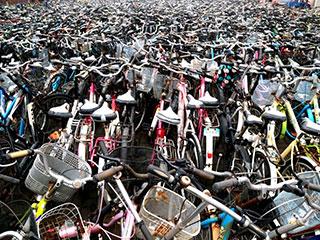 """高校清理千辆废旧自行车 似""""钢铁坟墓"""""""