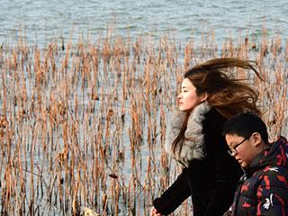 发型随机换!杭城刮起4-5级西北风