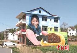 """江西:""""网红村""""巨型3D壁画受热捧"""