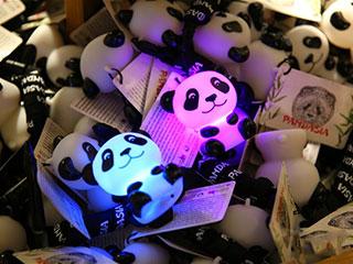 荷兰动物园热盼中国大熊猫