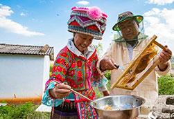 云南弥勒:酝酿甜蜜的养蜂人【组图】