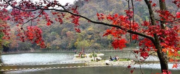 陕西宁强:汉江源头漫山红叶 层林尽染似画卷