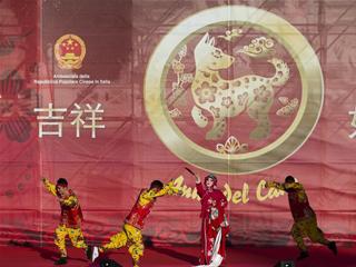 """""""欢乐春节""""庆祝活动在罗马举行"""