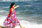 海边享春光