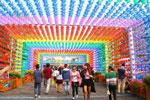 宁夏横城风车文化节 重拾儿时的欢乐