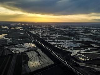 新疆伊犁河谷稻田生态美