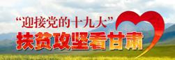 【专题】迎接党的十九大 脱贫攻坚看甘肃