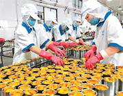 河南夏邑:台企助力农业扶贫