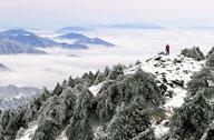 天台华顶国家森林公园迎来首场雾凇