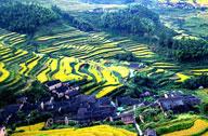 生态中国·碧水丹山瞰武夷