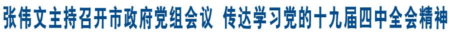 新利体育app政府党组召开会议传达学习党的十九届四中全会精神及省市委常委会(扩大)会议精神