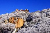 泰山雪后风景如画
