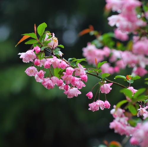 精致兰州丨初春的第一场雨