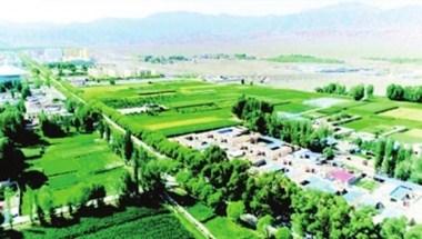 肃北:百亩风沙口绿色连片