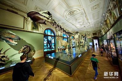 走进维也纳自然历史博物馆