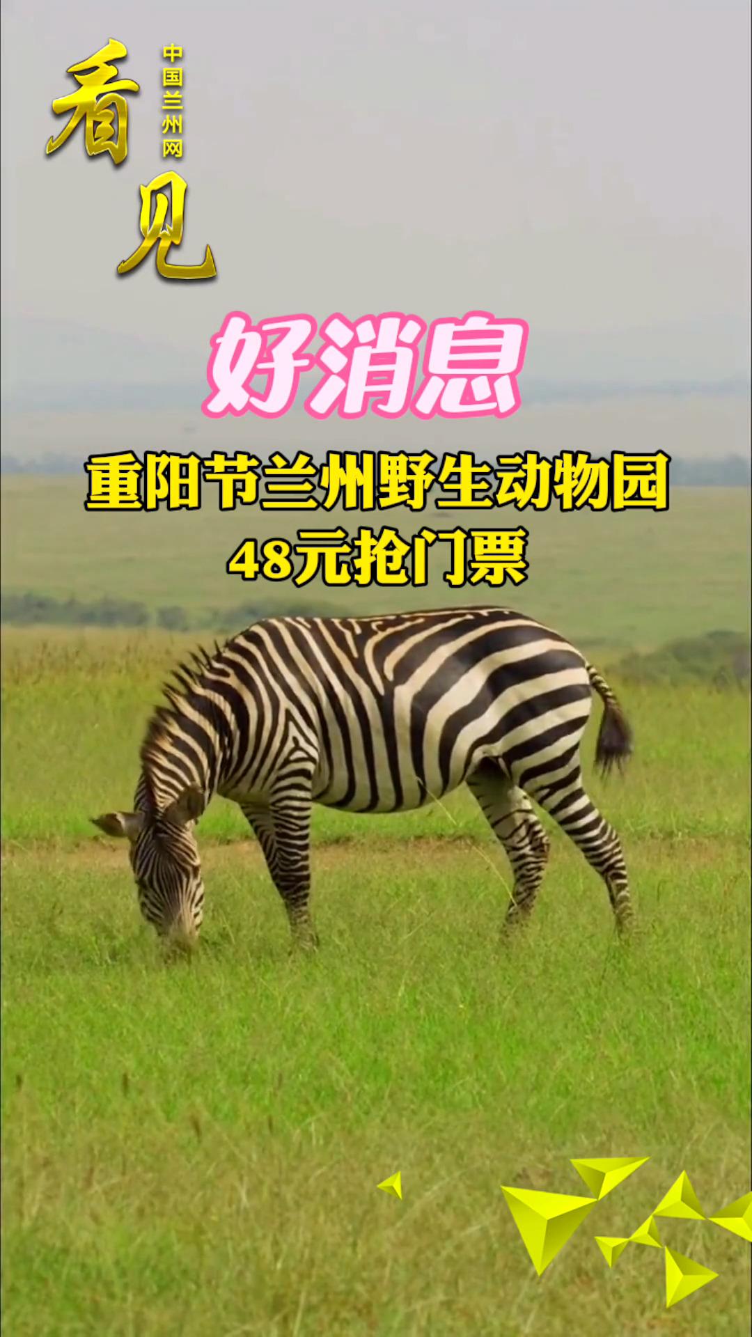 看� 重���mjia)菀吧 wu)�@(yuan)48元���T票