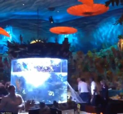 壁纸 海底 海底世界 海洋馆 水族馆 400_372