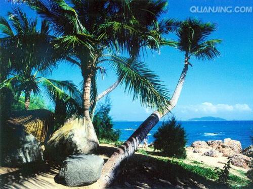 中国兰州网 旅游 自助游 正文  西瑁洲岛:亦称西岛,位于三亚湾内,面积