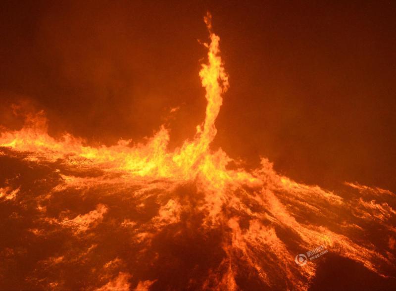 美国加州发生森林大火 强风助阵现