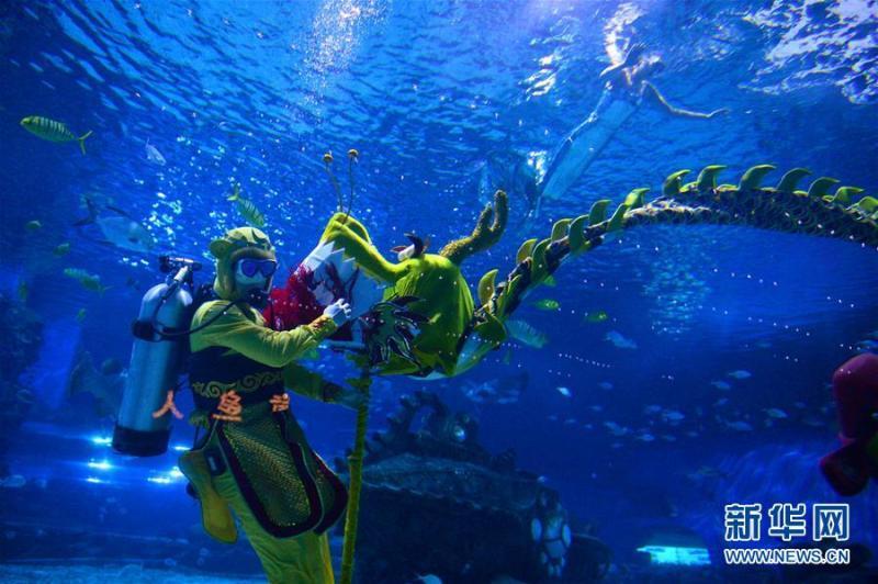 壁纸 海底 海底世界 海洋馆 水族馆 桌面 800_532